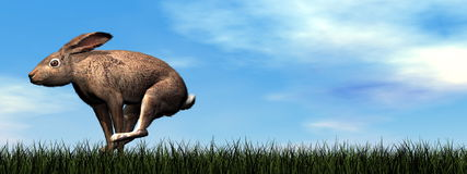 Running hare - 3D render Royalty Free Stock Photography