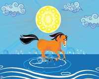 A running horse in the Beach Royalty Free Stock Image