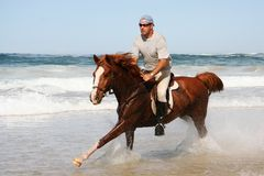 Running Horse at beach. Galloping brown horse and rider in the shallow water at the beach Stock Photo