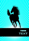 Running horse, vector Royalty Free Stock Images