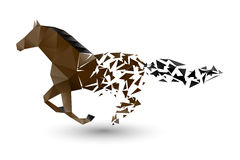 Running horse from the collapsing grounds Stock Image