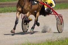 Running horse. Equestrians running horse on hippodrome Stock Images