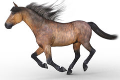 Running horse isolated. 3d illustration Royalty Free Stock Photos