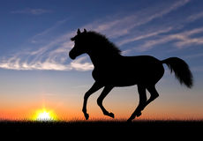 Running horse silhouette Stock Photos