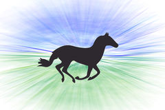 Running horse, speed Royalty Free Stock Photos