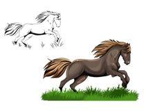 Running horse Royalty Free Stock Photo