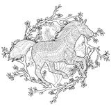 Running horse in zentangle style. Royalty Free Stock Photo