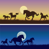 Running horses against a decline, nights. 2 vector images of running horses on a yellow-violet background of a decline with the sun, on a dark blue background of stock illustration
