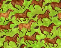 Running horses. On green background. Illustration hand-drawn with watercolor royalty free illustration