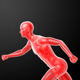 Running human anatomy by X-rays in red Stock Photography