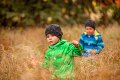 Running Kids through the Grass. Two boys running through the high grass in the park at autumn time Stock Photo
