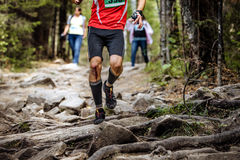 Running leader marathon runner in woods. Over rocks and tree roots. knees in blood Royalty Free Stock Photos