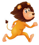 A running lion Stock Image