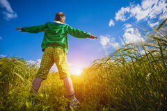 Running little happy boy meadow weat field Royalty Free Stock Photo