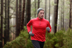 Running man in forest woods training. And exercising for trail run marathon endurance race. Fitness healthy lifestyle concept with male athlete trail runner Royalty Free Stock Photography