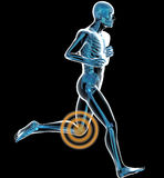 Running man with knee pain Royalty Free Stock Photo