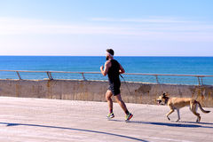 Free Running Man With The Dog Royalty Free Stock Photo - 66605395