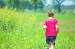 Running through the meadow. Young boy running royalty free stock photography