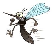 Running mosquito Stock Photography