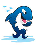 Running Orca Whale. Cartoon running Orca whale trailing water drops Stock Photography