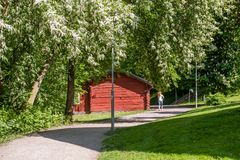 Running in the park during early summer Stock Images