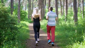 Running in the park. Male and female runners. Sport and healthy lifestyle stock footage