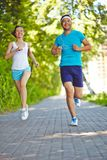 Running in park Stock Images