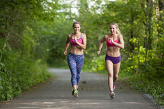 Running partners Royalty Free Stock Image