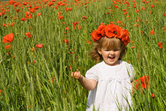 Running on the poppy field Royalty Free Stock Image
