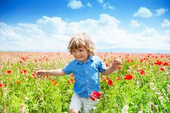 Running in poppy fired Stock Photo