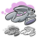 Running rabbit Stock Photos