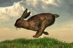 Running Rabbit vector illustration