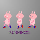 Running rabbits Stock Images