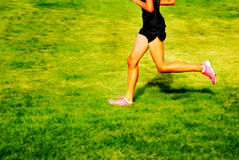 Running a Race Royalty Free Stock Photography