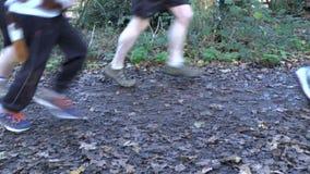 Running a race stock video