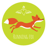 Running red fox Stock Photos