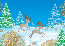 Running reindeers. High resolution image (created in Photo Shop) for your design and wallpaper Royalty Free Stock Photos