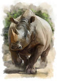 Running Rhino. Watercolor painting in the style of grunge stock illustration