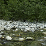 Running river water Royalty Free Stock Photography