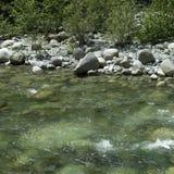 Running river water Royalty Free Stock Photos
