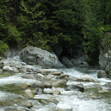 Running river water Stock Photography
