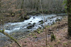 Running river. Running water trough stones at end winter begin spring Stock Photography