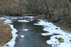 Running River in winter. Trough forest with ice on the water Royalty Free Stock Photography