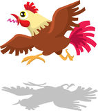 Running Rooster  Crowing Royalty Free Stock Photography
