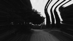 Running scared. Through the woods. Black and white distressed abstract blur stock video
