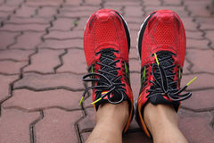 Running shoe. Red running shoe in thailand sport Royalty Free Stock Image
