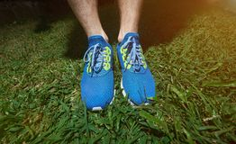 Running shoes close-up. Standing on green grass background. Summer jog exercise Royalty Free Stock Photo