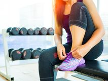 Closeup of woman tying shoe laces. Female sport fitness runner getting ready for jogging in gym. Running shoes - closeup of woman tying shoe laces. Female sport royalty free stock photo