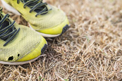 Running shoes Royalty Free Stock Image