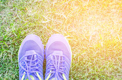 Running shoes on a green grass field Royalty Free Stock Photo